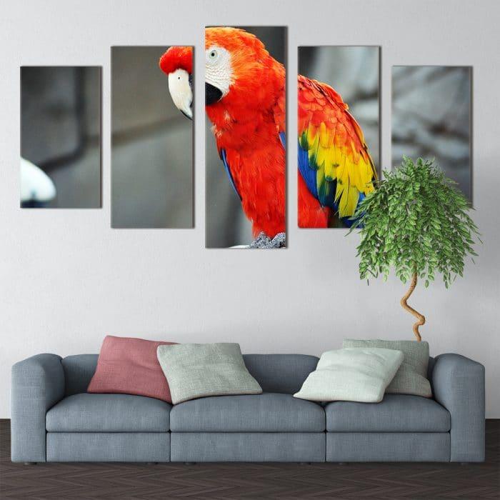 Beautiful Parrot- Beautiful Home Décor | Unique Canvas
