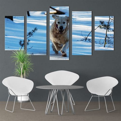 Bounding Golden Retriever - Beautiful Home Décor | Unique Canvas