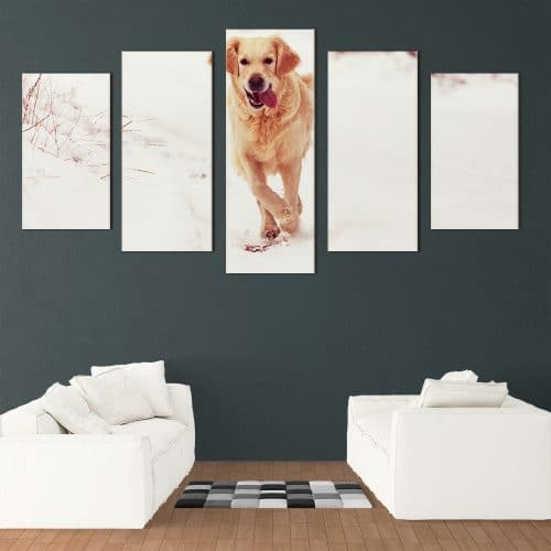 Snowy Golden Retriever - Beautiful Home Décor | Unique Canvas