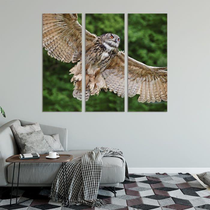 Flying Owl - Beautiful Home Décor | Unique Canvas